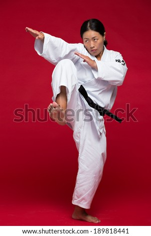 Japanese female practicing karate position - stock photo