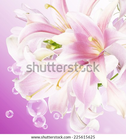Japanese floral background.Lily - stock photo