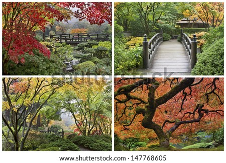 Japanese Garden in the Fall Season with Maple Trees and Wooden Foot Bridge over Creek Collage - stock photo
