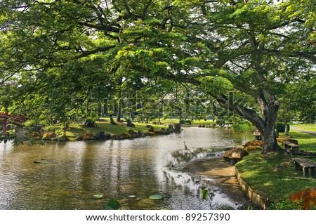 Japanese garden landscape in Singapore - stock photo
