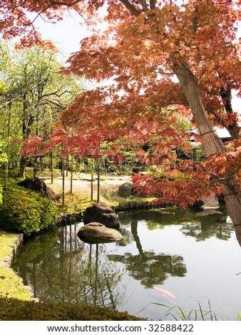 Japanese garden with maple and lake - stock photo