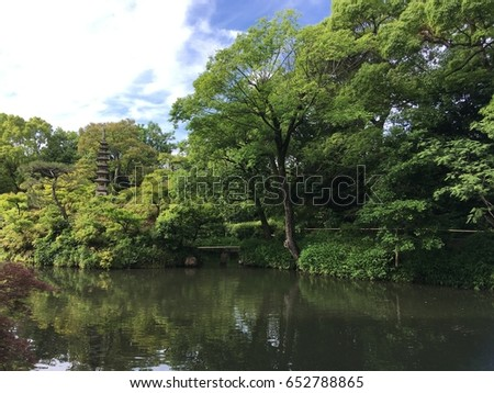 Japanese garden with natural green background and pond.