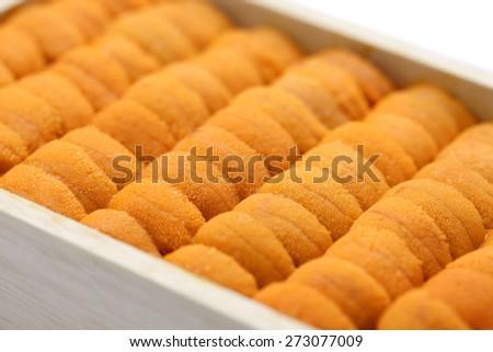 japanese green sea urchin roe, ezo bafun uni, sushi and sashimi ingredients - stock photo
