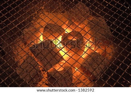 japanese grill - stock photo