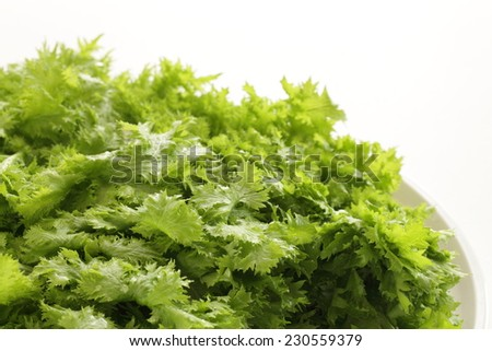 Japanese herbal vegetable, Wasabina