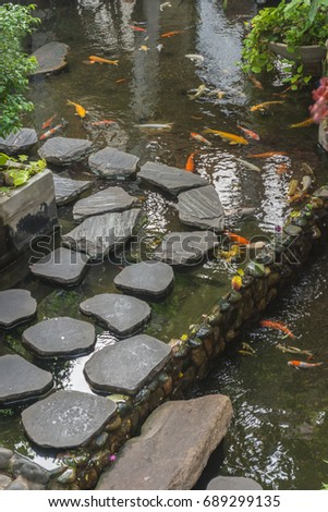 japanese koi carp in a pond of japanese garden