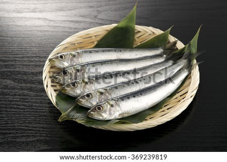 Japanese pilchard - stock photo