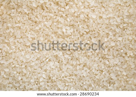 japanese rice (high resolution closeup)