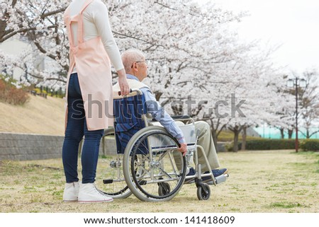 Japanese senior man sitting on a wheelchair background of cherry