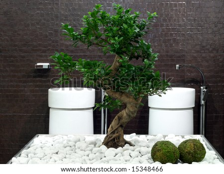 Japanese style bathroom with bonsai tree and stones - stock photo