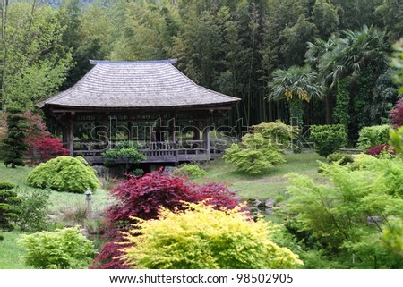 Japanese style garden landscape - stock photo