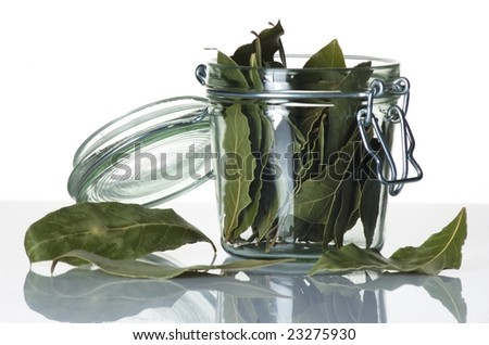 Jar of herbs - stock photo