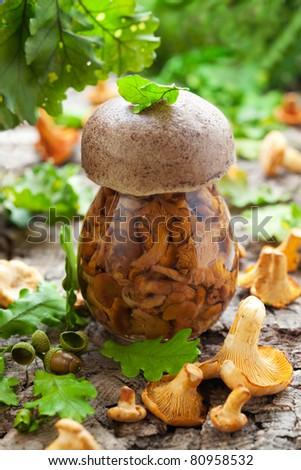 Jar of picked chanterelles and fresh mushrooms - stock photo