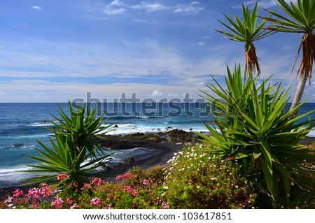 Jardin beach in Puerto de la Cruz, Tenerife, Canary Islands - stock photo