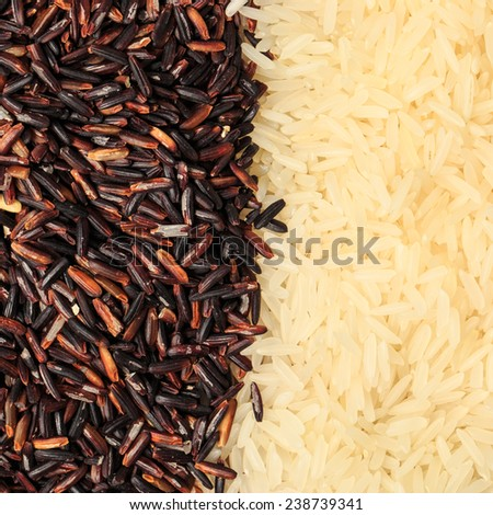 Jasmine Rice and milled rice imperfectly cleaned  - stock photo