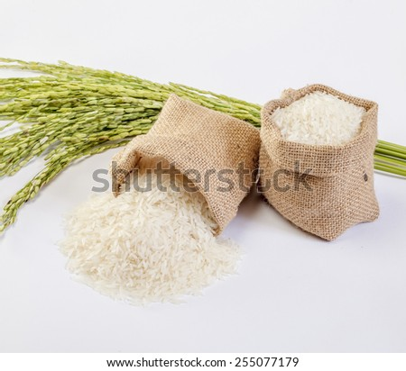 Jasmine Rice in bamboo basketry and rice spike - stock photo