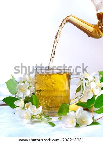 Jasmine tea in with fresh jasmine flowers on white background. - stock photo