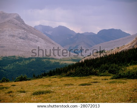 Jasper National Park seen from the Cardinal River Divide on the park's eastern boundary, south of Cadomine, Alberta, Canada - stock photo