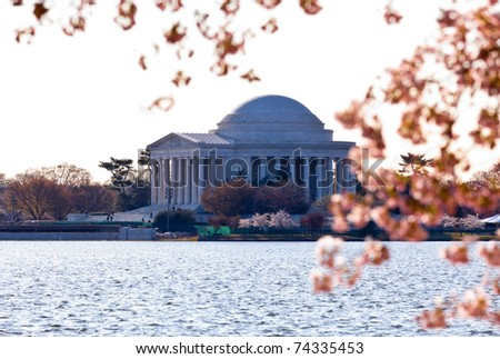 Jefferson Memorial at dawn by Tidal Basin and surrounded by pink Japanese Cherry blossoms - stock photo