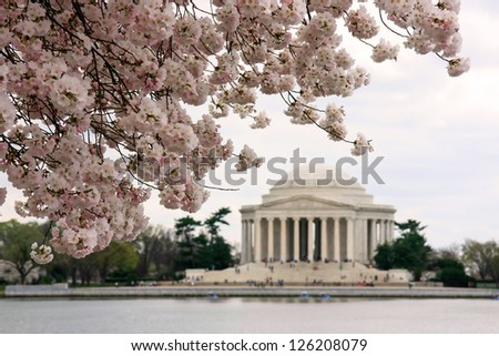 Jefferson Memorial during cherry blossoms festival