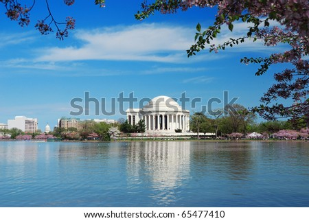 Jefferson national memorial with cherry blossom in Washington DC. - stock photo
