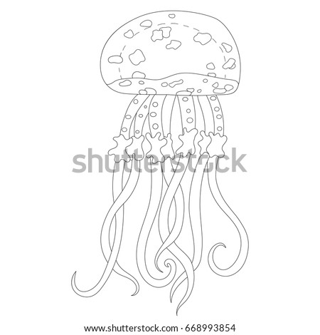 jellyfish coloring page - Jellyfish Coloring Page