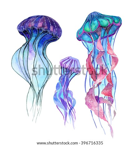 jellyfish stock photos royalty free images vectors shutterstock. Black Bedroom Furniture Sets. Home Design Ideas