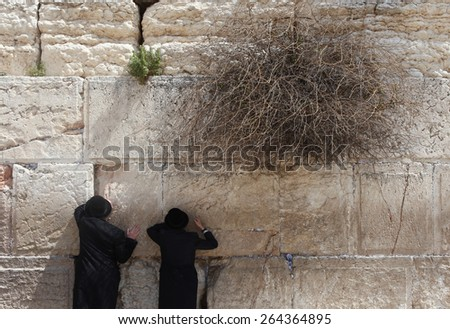Jerusalem, Israel - March 24 2015 : Orthodox Jewish men pray at the western wall. The western wall is an exposed section of ancient wall situated on the western flank of the Temple Mount. - stock photo
