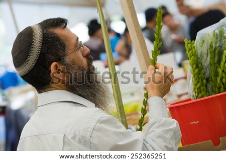 JERUSALEM, ISRAEL - 08 OCTOBER, 2014: An orthodox jewish man is checking a myrtle plant on a market in Jerusalem just before the sukkot holiday - stock photo