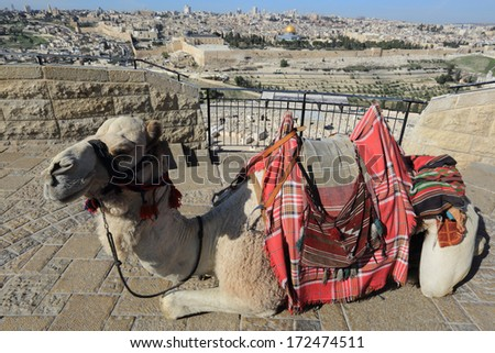 Jerusalem - Mount of Olives and old city - stock photo