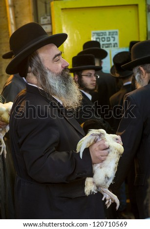 JERUSALEM - SEP 25 : An ultra Orthodox Jewish man holds a chicken during the Kaparot ceremony held in Jerusalem Israel in September 25 2012 - stock photo