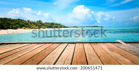 Jetty, beach and jungle - vacation background.  Outdoor shot - stock photo