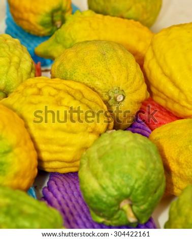 Jewish autumn holiday of Sukkot. Ritual fruit - citrus on the counter traditional bazaar in Jerusalem - stock photo