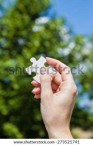 Jigsaw Piece, Puzzle, Choice. - stock photo