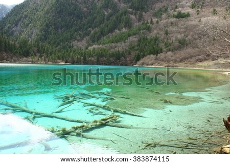 Jiuzhaigou national park, Five Flower Lake is lake in Sichuan, China with dead tree underwater - stock photo