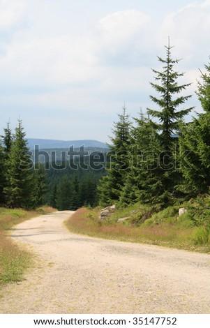 Jizera Mountains in summer - stock photo