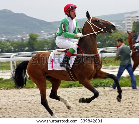 Jockey on horse.Hippodrome of Pyatigorsk (Northern Caucasus), season 2012.