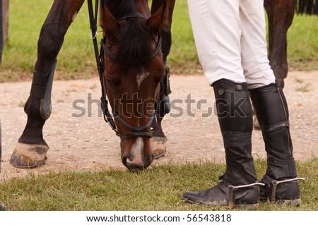 jockey resting whit his horse - stock photo