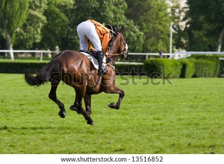 Jockey wearing an orange blouse riding a brown horse. - stock photo