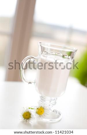 Joghurt in the glass / Healthy breakfast - stock photo