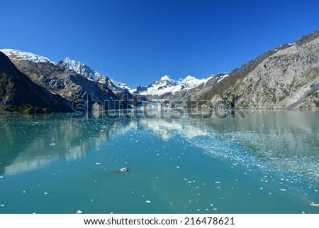 johns hopkins glacier  in glacier bay, in southeast alaska - stock photo