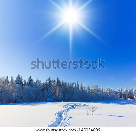 Jolly Sunny Winter - stock photo