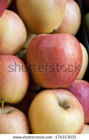 jonah gold apples at the market - stock photo