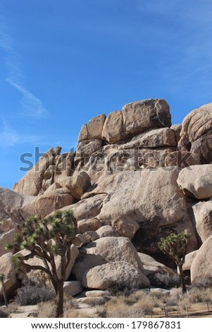 Joshua Tree National Park California Desert Landscape