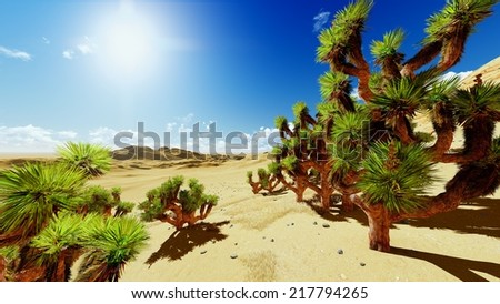Joshua trees in USA national park - stock photo