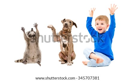 Joyful boy, raccoon and puppy sitting isolated on white background - stock photo