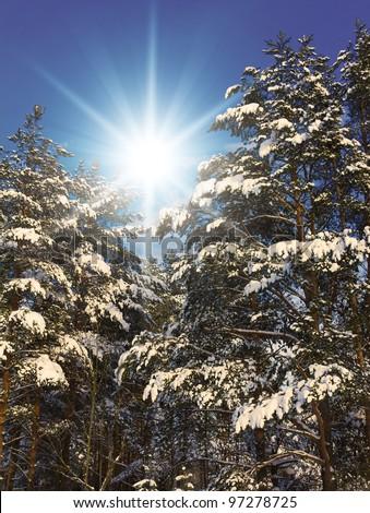 Joyful Happy Winter - stock photo