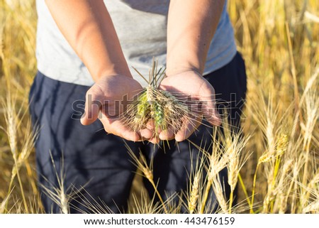 joyful young farmer in a wheat field
