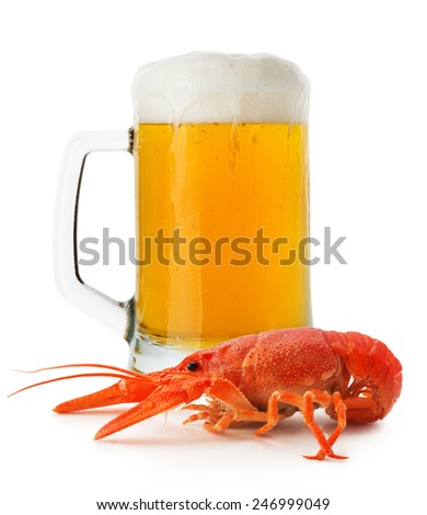 jug of beer with lobster isolated on the white background - stock photo