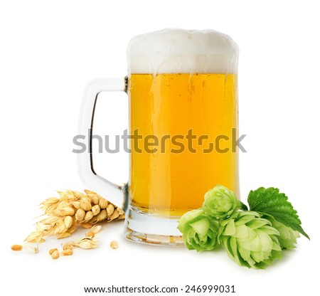 jug of beer with wheat and hops isolated on the white background - stock photo